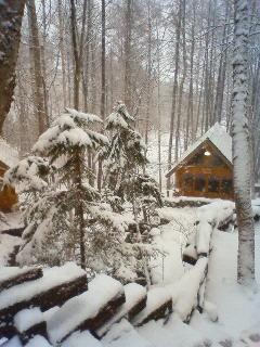 雪、雪、吹雪。