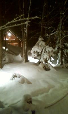 気前よく大雪。