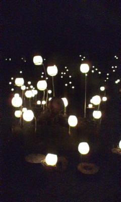 くわどり湯ったり村の灯り。その二。