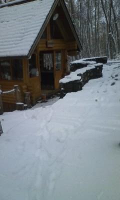 雪、はじめました。