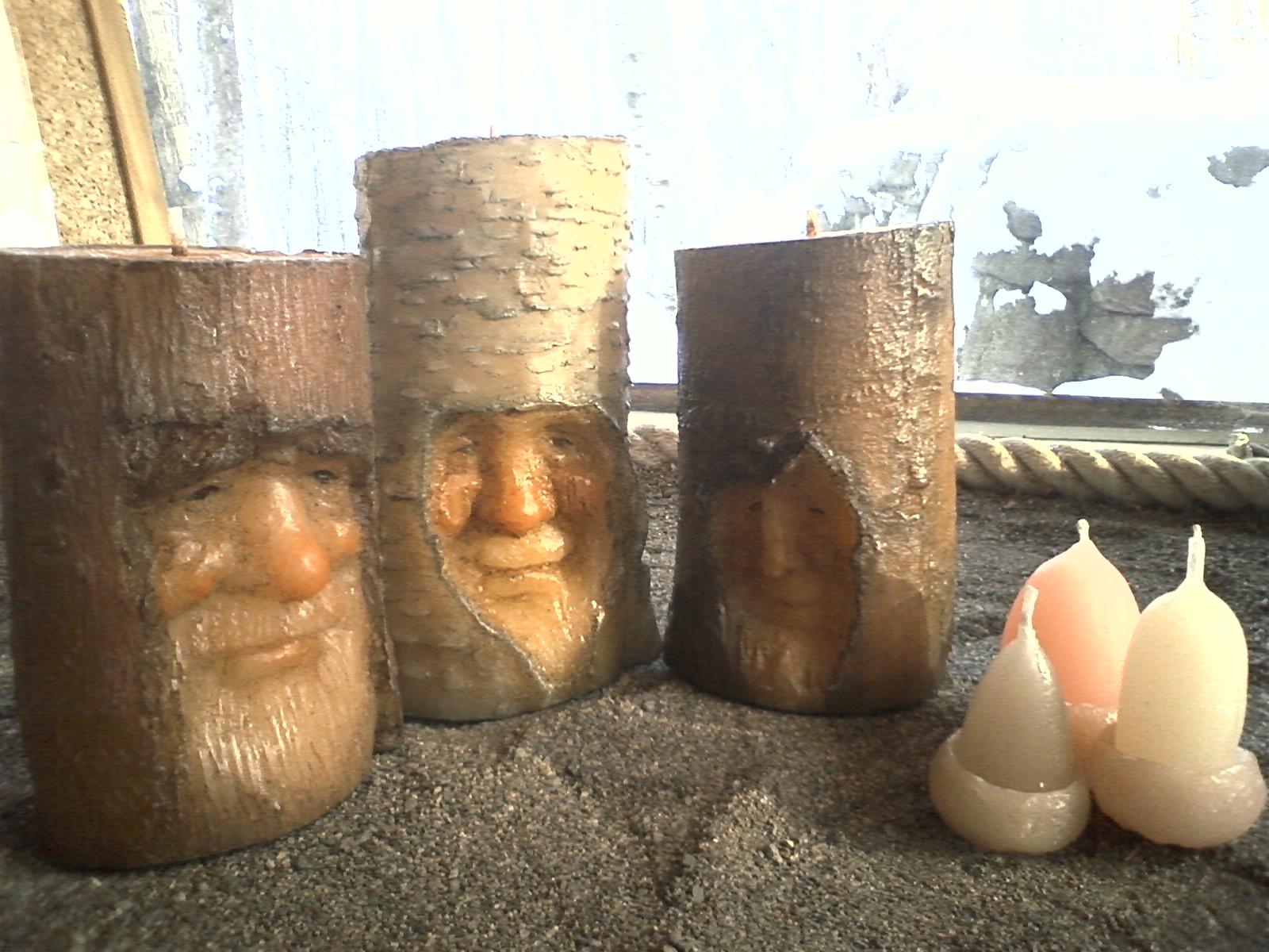森の仲間たち